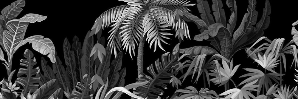 Jungle Photo Wallpaper in Black & White