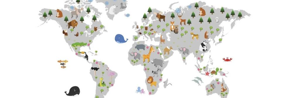 Worldmaps for Kids on Wallpaper