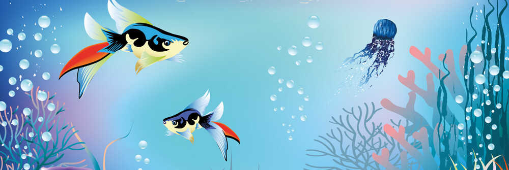Wallpaper with fish