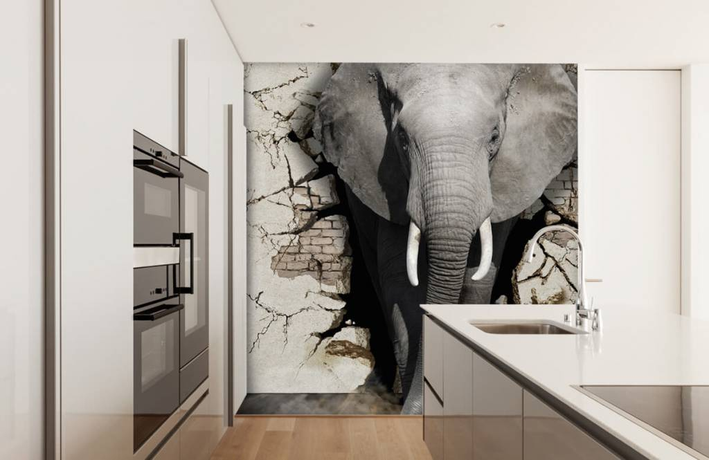 Animals - 3D Elephant from the wall - Teenage room 1