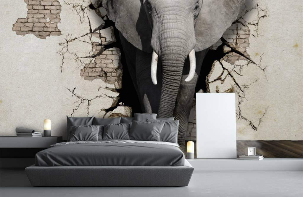 Animals - 3D Elephant from the wall - Teenage room 2
