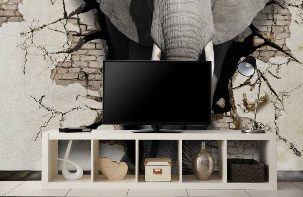 Animals - 3D Elephant from the wall - Teenage room 3