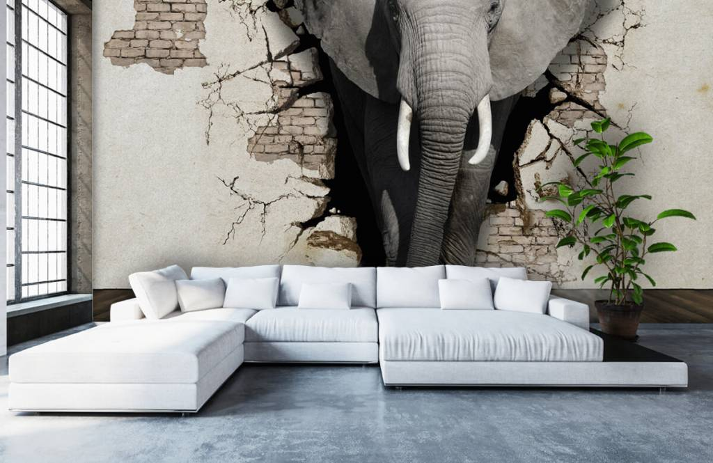 Animals - 3D Elephant from the wall - Teenage room 5