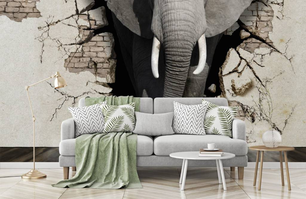 Animals - 3D Elephant from the wall - Teenage room 7