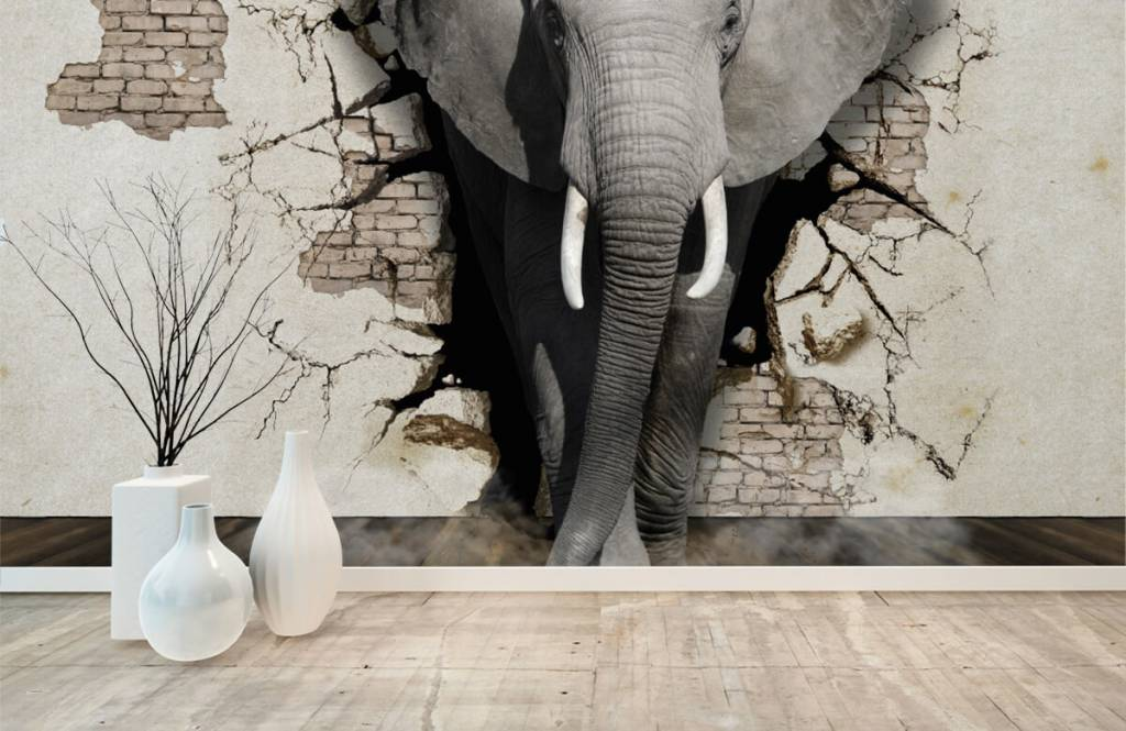 Animals - 3D Elephant from the wall - Teenage room 8