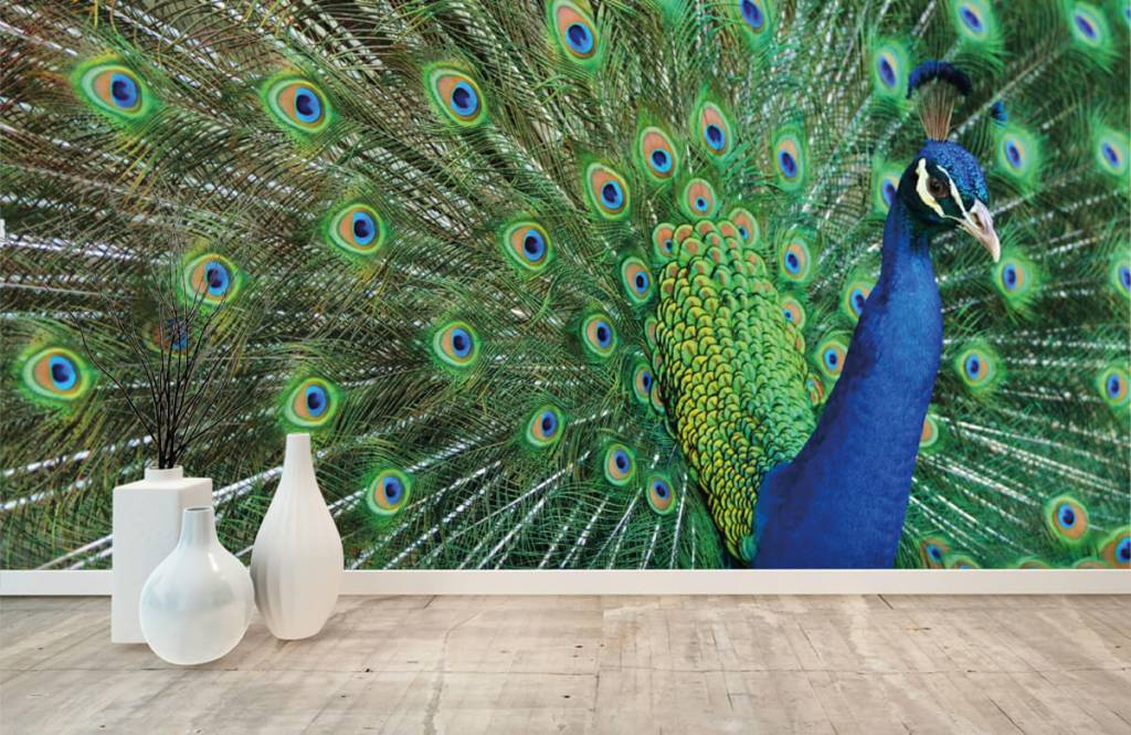 Other - Peacock - Children's room 8