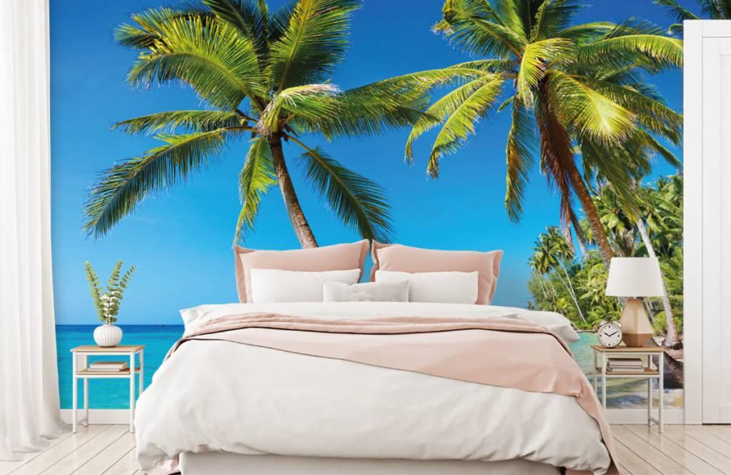 Palmtrees - Caribbean - Bedroom 2