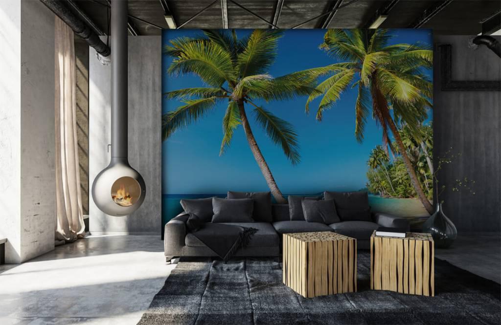 Palmtrees - Caribbean - Bedroom 6