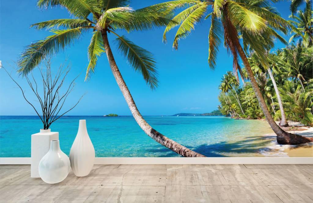 Palmtrees - Caribbean - Bedroom 8