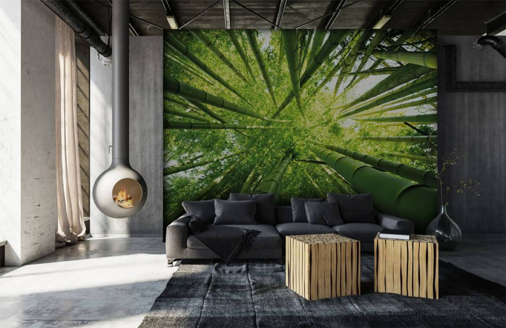Forest wallpaper - Bamboo - Hallway 6