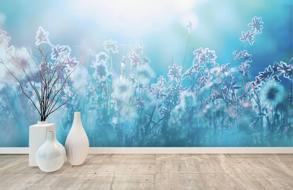 Flower fields - Flowers in the sun - Bedroom 1