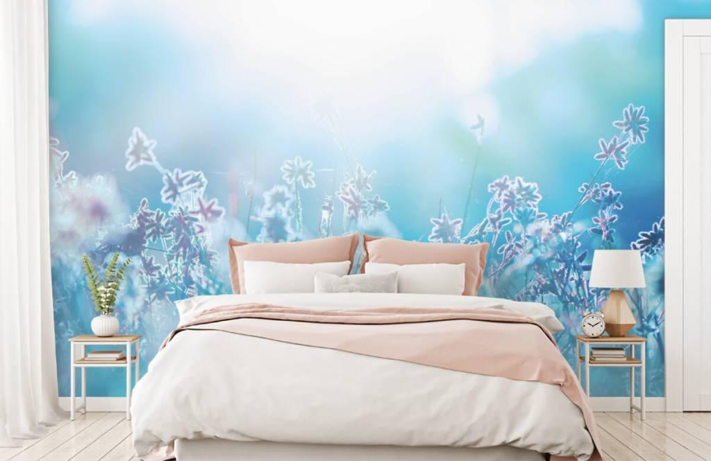Flower fields - Flowers in the sun - Bedroom 2