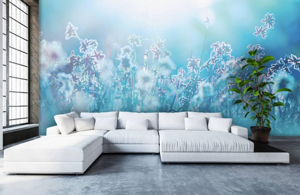 Flower fields - Flowers in the sun - Bedroom 6