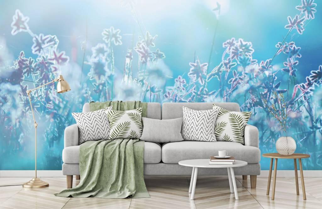 Flower fields - Flowers in the sun - Bedroom 8