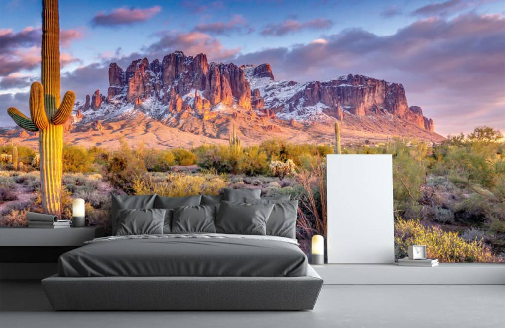 Mountains - Cactus in a mountain landscape - Living room 4