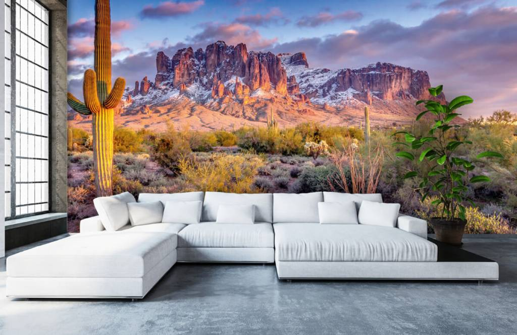 Mountains - Cactus in a mountain landscape - Living room 6