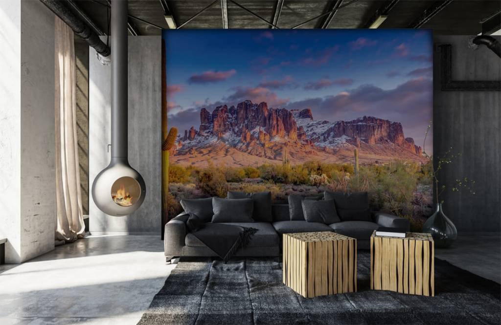 Mountains - Cactus in a mountain landscape - Living room 7