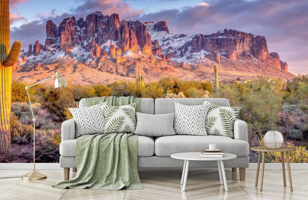 Mountains - Cactus in a mountain landscape - Living room 8