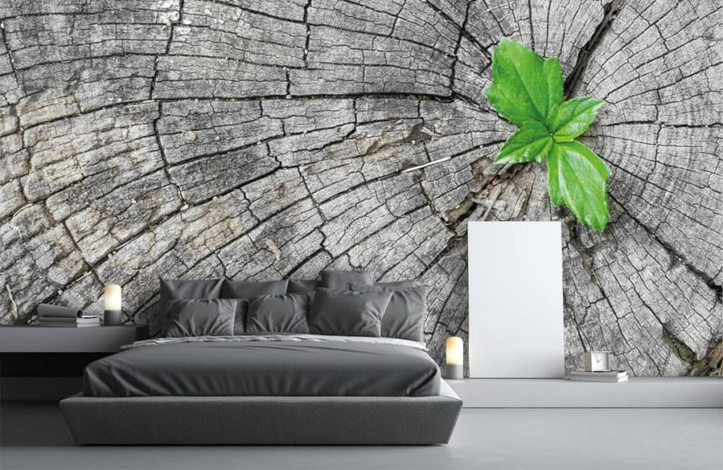 Wooden wallpaper - Diameter of a tree trunk - Bedroom 5