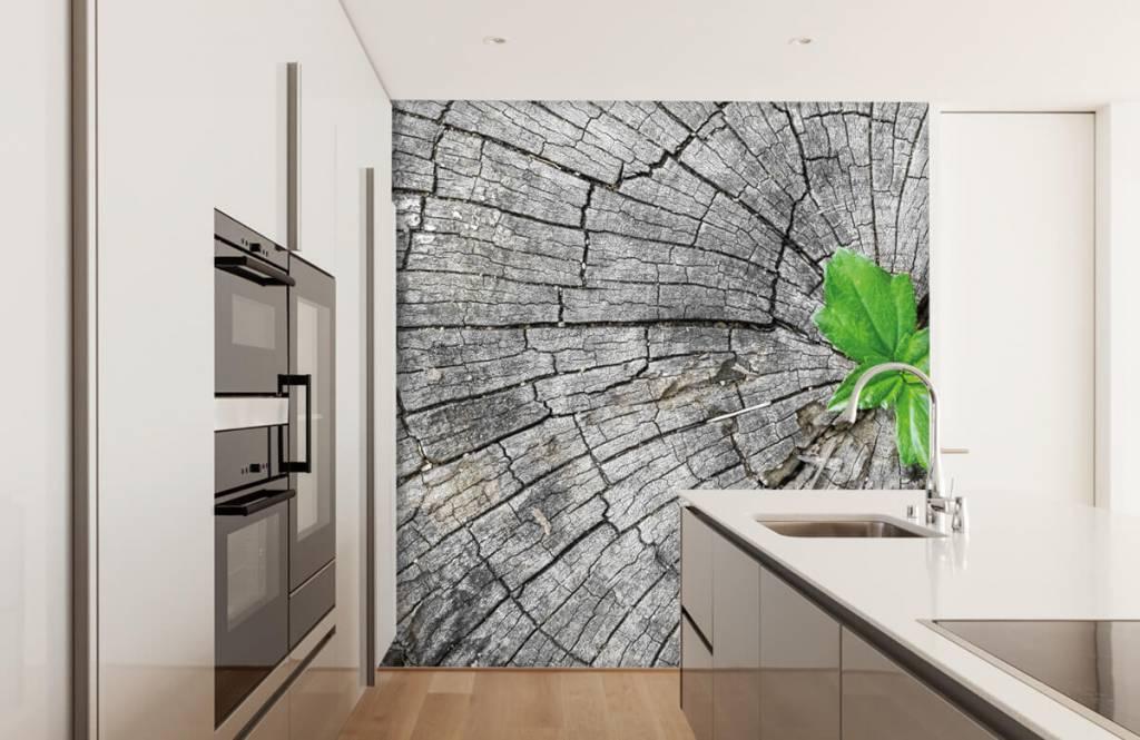 Wooden wallpaper - Diameter of a tree trunk - Bedroom 6
