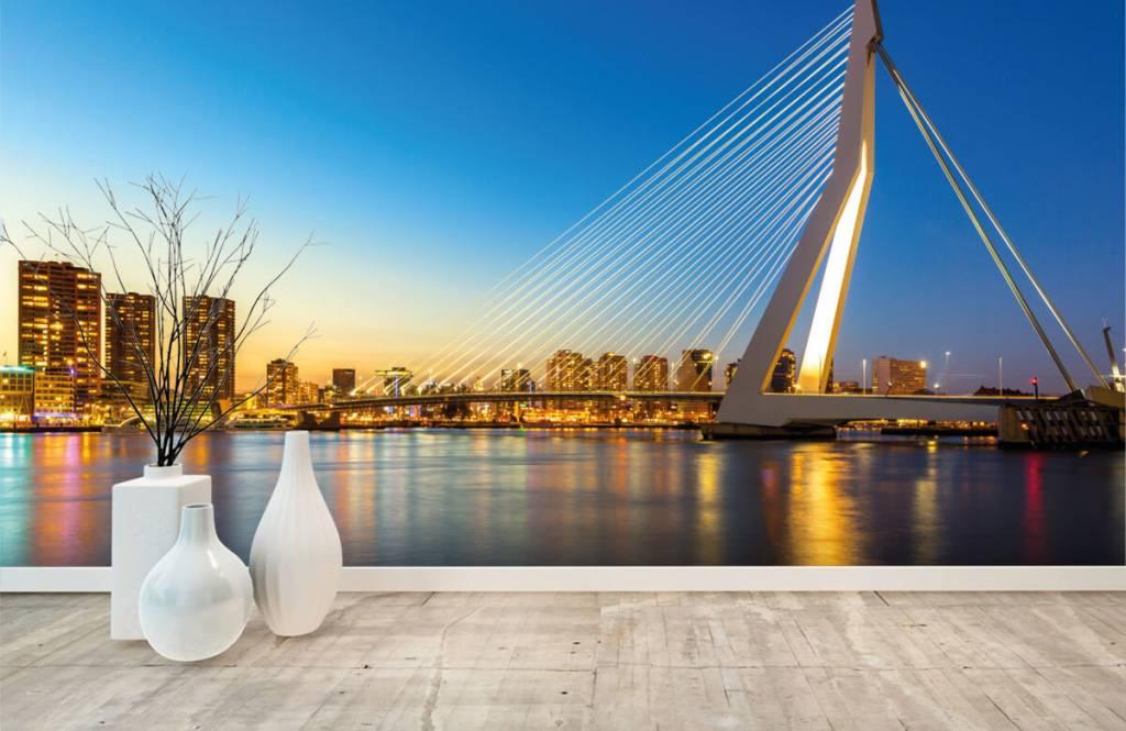 Cities wallpaper - Erasmus Bridge - Office 1