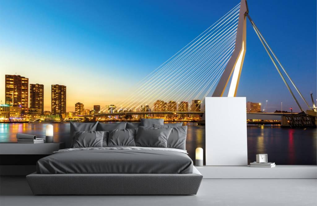 Cities wallpaper - Erasmus Bridge - Office 3