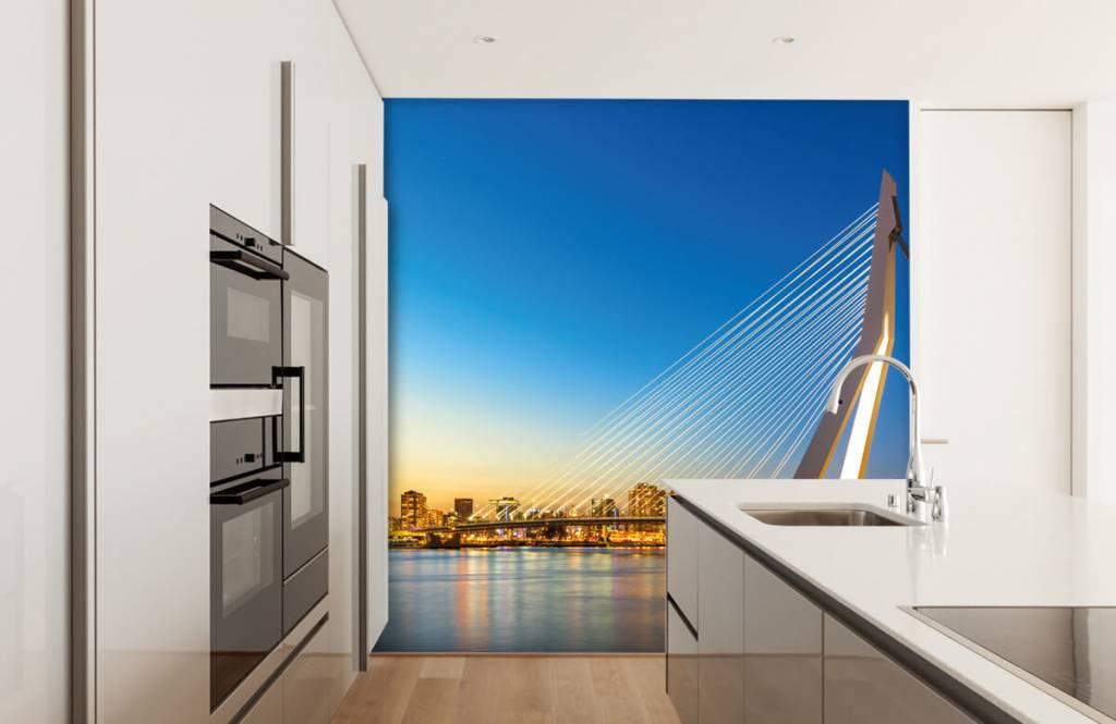 Cities wallpaper - Erasmus Bridge - Office 4