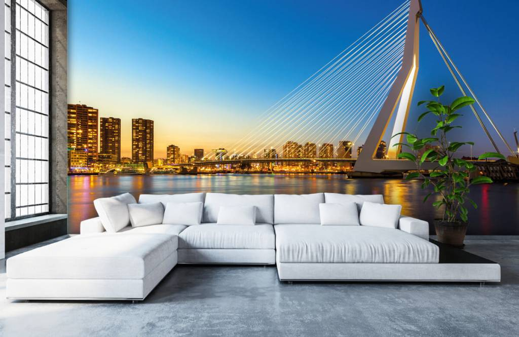 Cities wallpaper - Erasmus Bridge - Office 6
