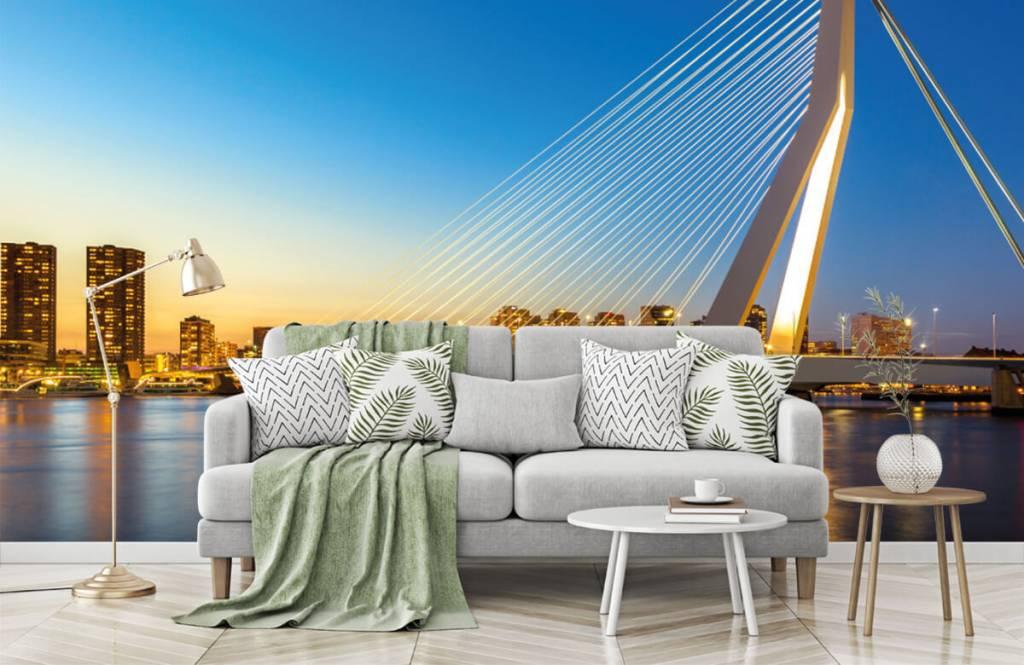 Cities wallpaper - Erasmus Bridge - Office 8