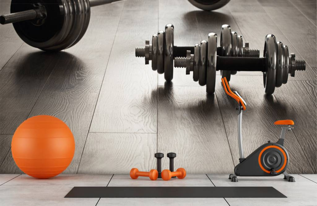 Fitness - Dumbells and weights - Hobby room 1