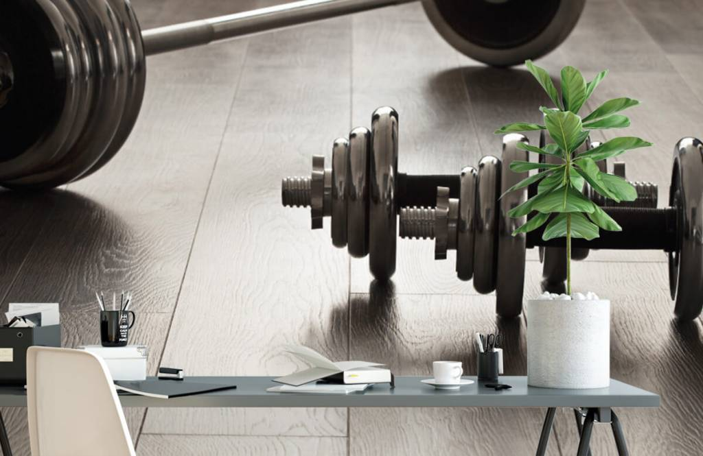 Fitness - Dumbells and weights - Hobby room 2