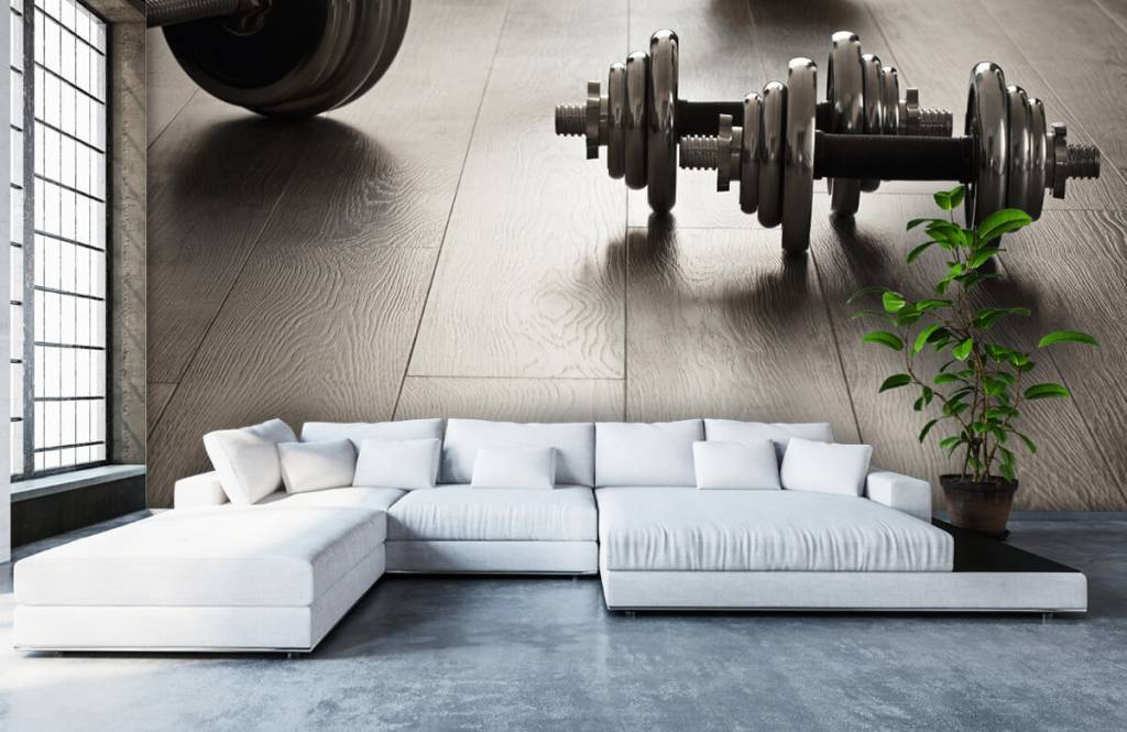 Fitness - Dumbells and weights - Hobby room 4
