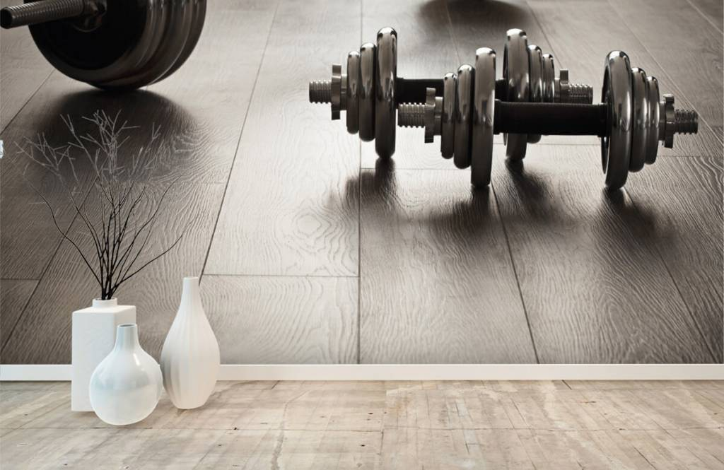 Fitness - Dumbells and weights - Hobby room 6