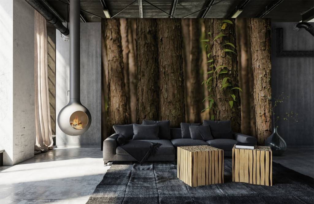 Forest wallpaper - Thin tree trunks - Entrance 6