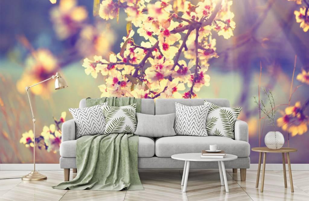 Blossom - Flowering tree - Bedroom 1