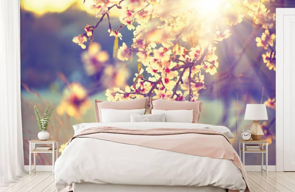 Blossom - Flowering tree - Bedroom 2