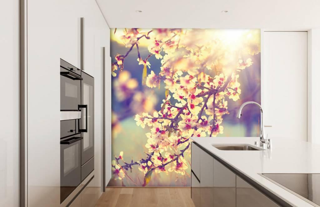 Blossom - Flowering tree - Bedroom 4
