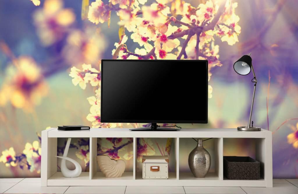 Blossom - Flowering tree - Bedroom 5