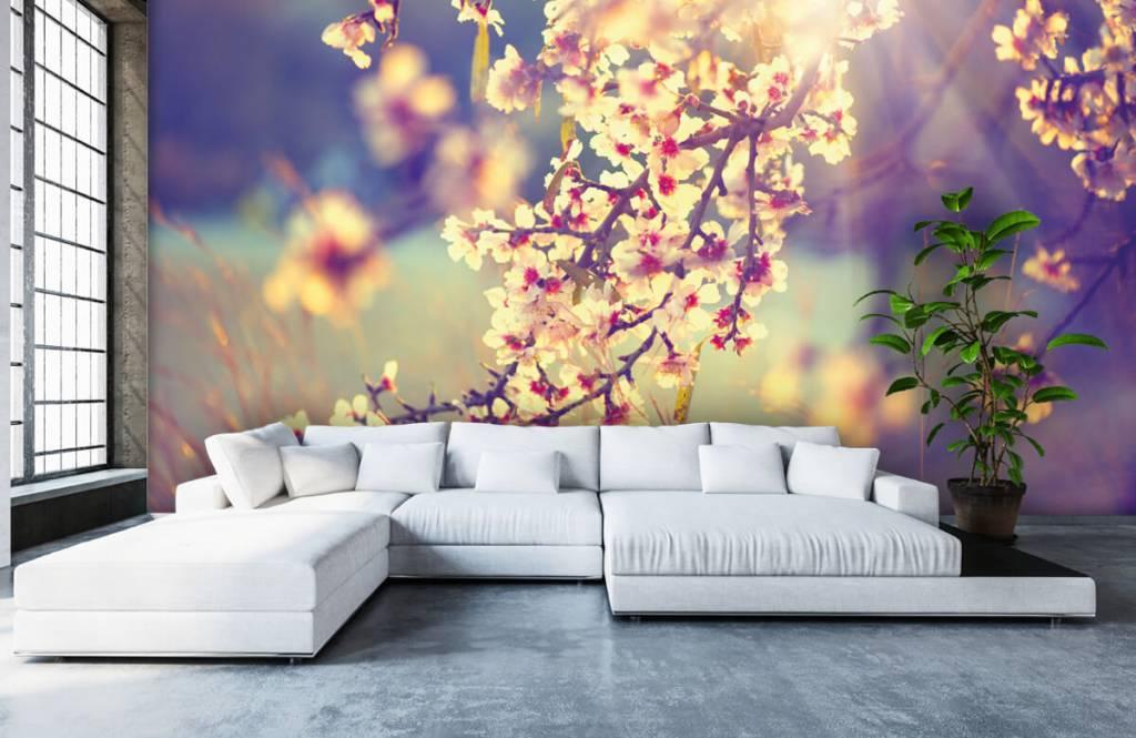 Blossom - Flowering tree - Bedroom 6