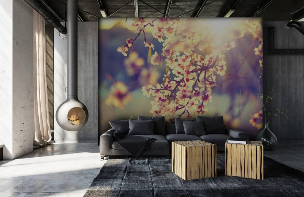 Blossom - Flowering tree - Bedroom 7