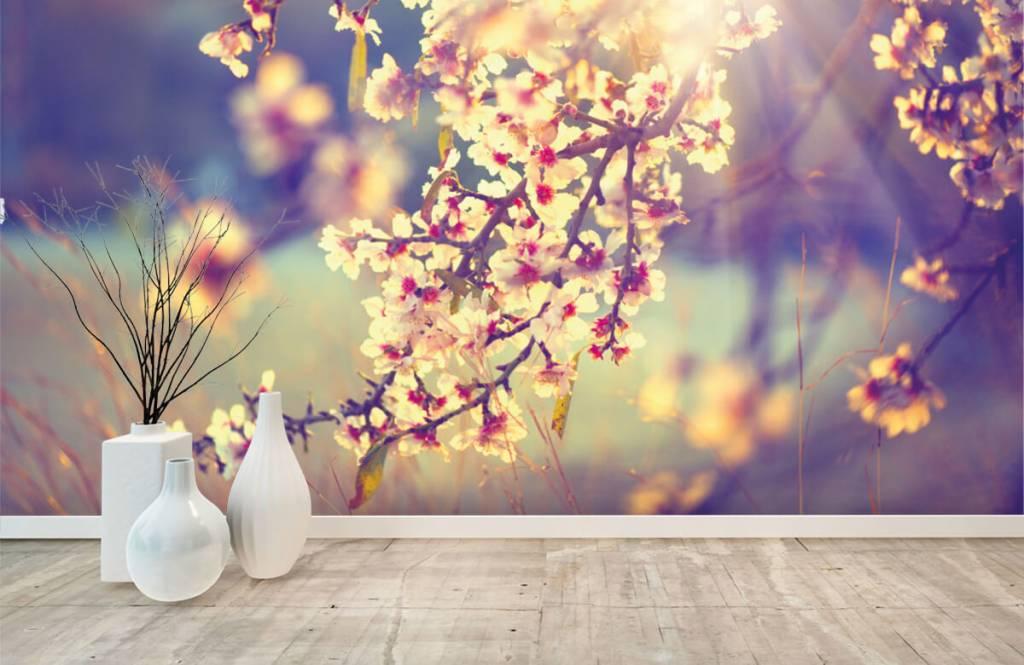 Blossom - Flowering tree - Bedroom 8