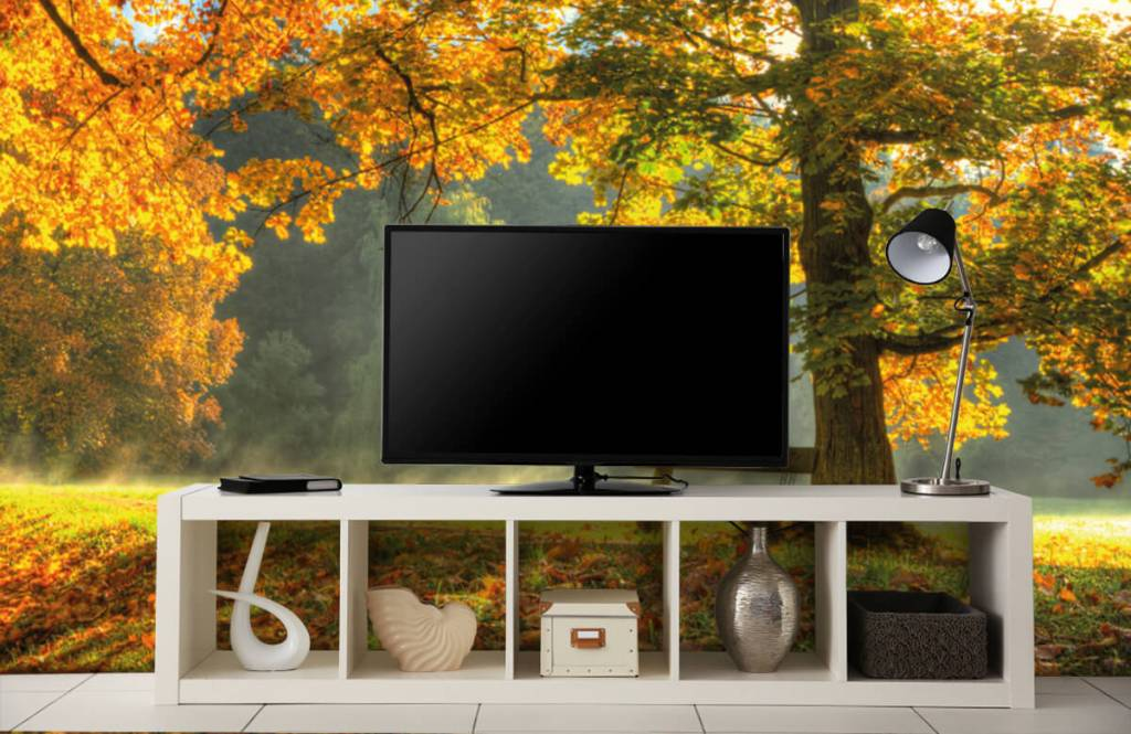 Forest wallpaper - Tree in autumn colors - Bedroom 2