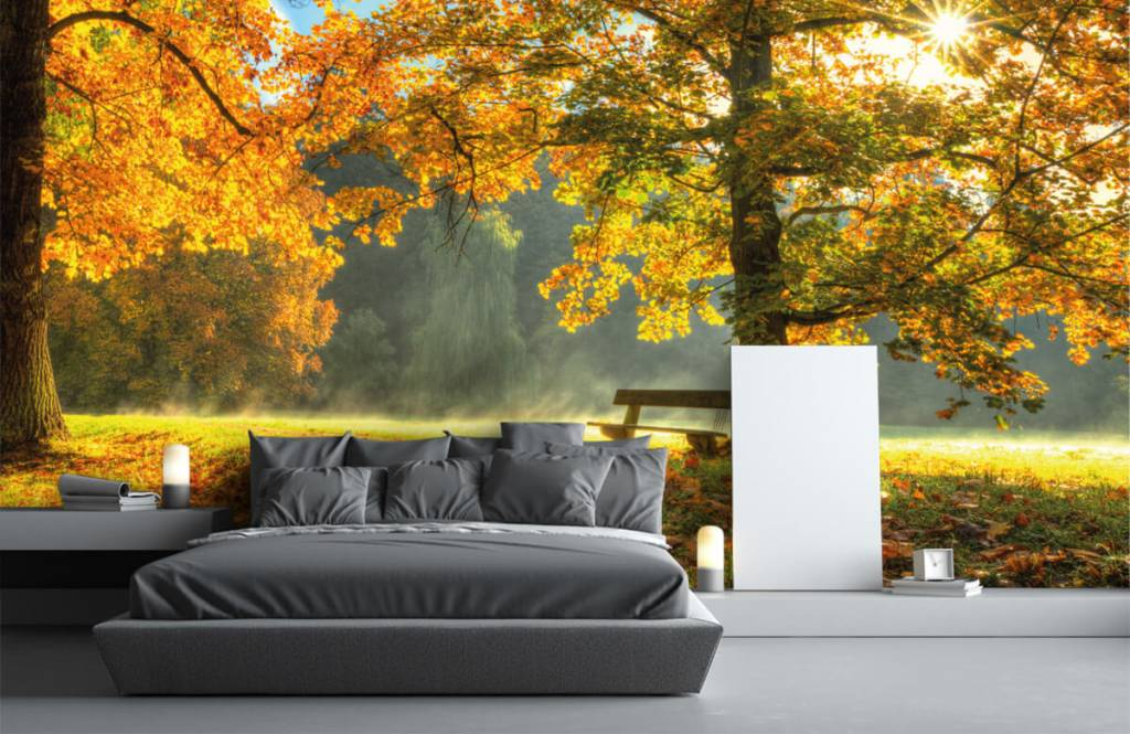 Forest wallpaper - Tree in autumn colors - Bedroom 3