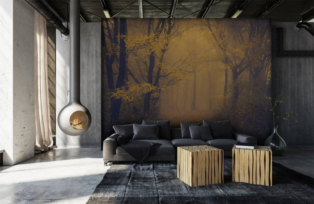Forest wallpaper - Dark forest - Bedroom 1