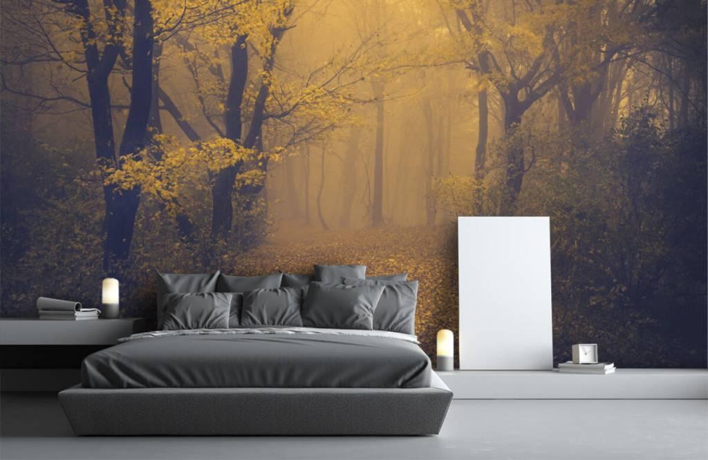 Forest wallpaper - Dark forest - Bedroom 3