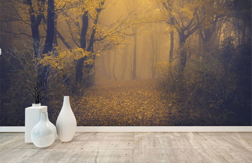 Forest wallpaper - Dark forest - Bedroom 8