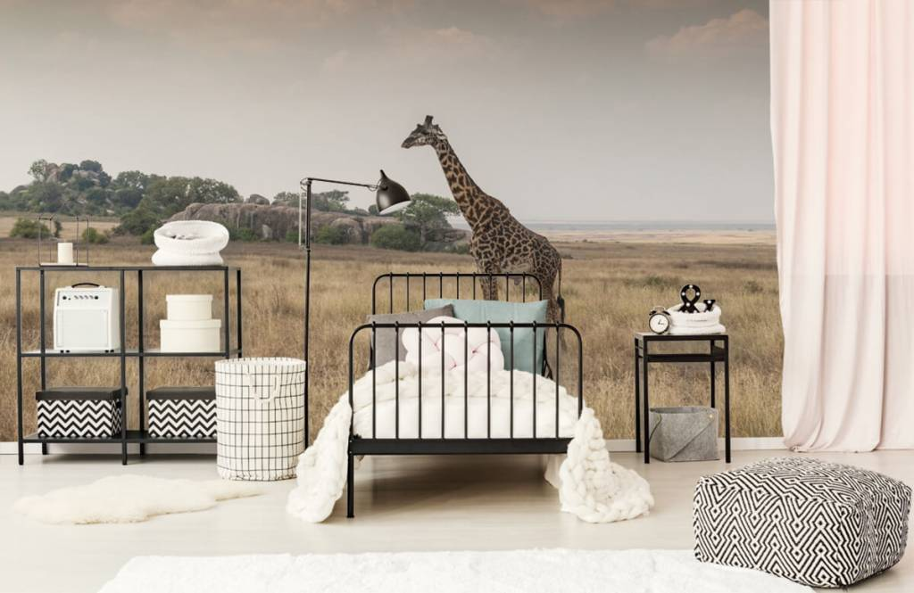 Animals - Giraffe on a savannah - Bedroom 7