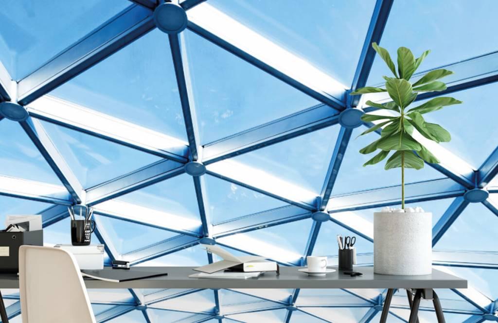 Buildings - Glass ceiling - Entrance 2