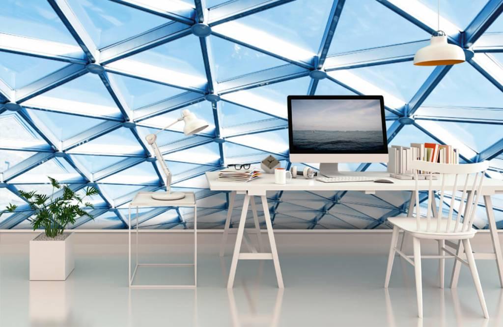 Buildings - Glass ceiling - Entrance 3