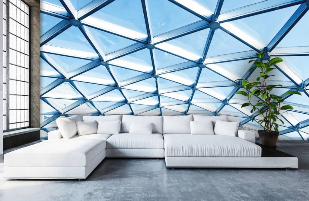 Buildings - Glass ceiling - Entrance 5